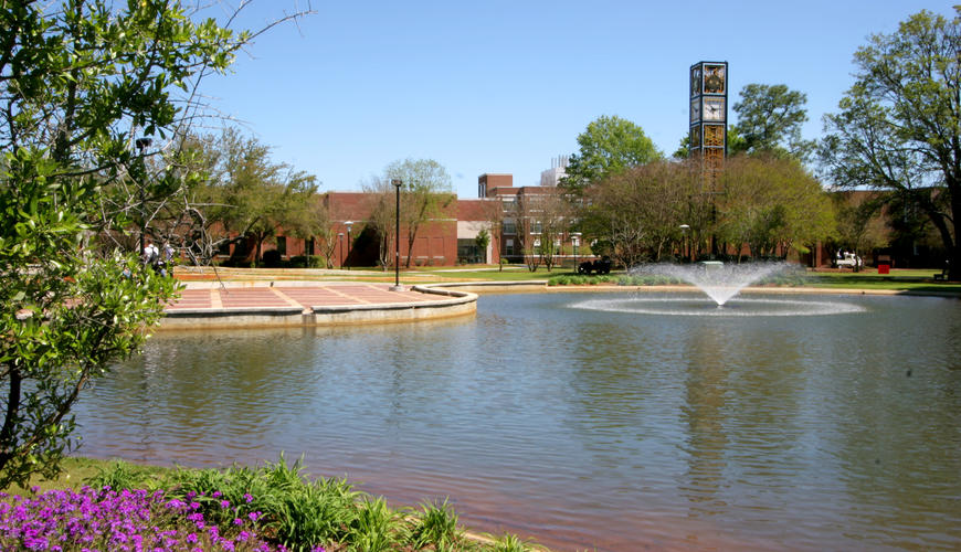 Water Feature and Amphitheatre