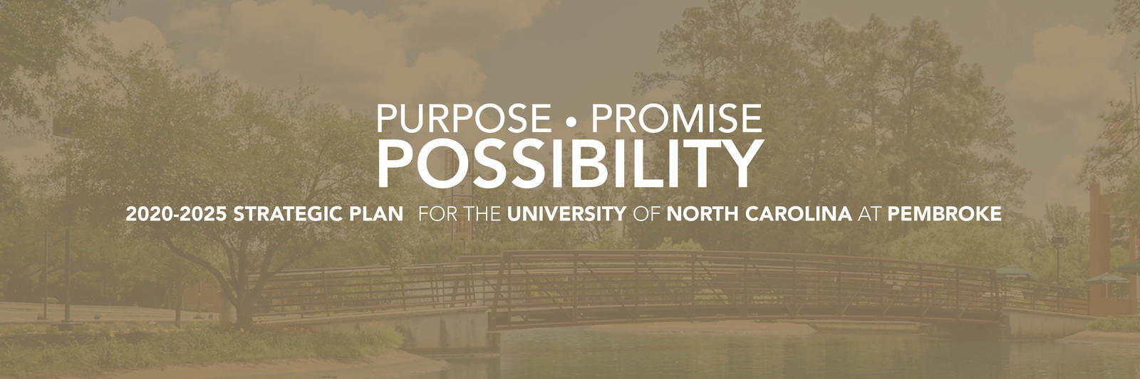 UNCP's Strategic Plan 2020-2025: Purpose. Promise. Possibility.