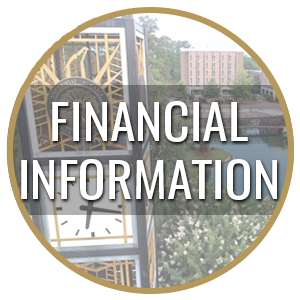 Financial Information