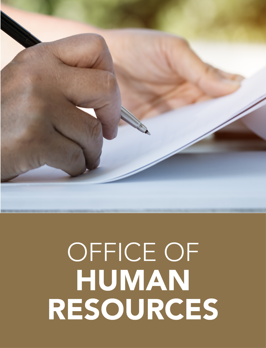 OFFICE OF HUMAN RESOURCES LINK