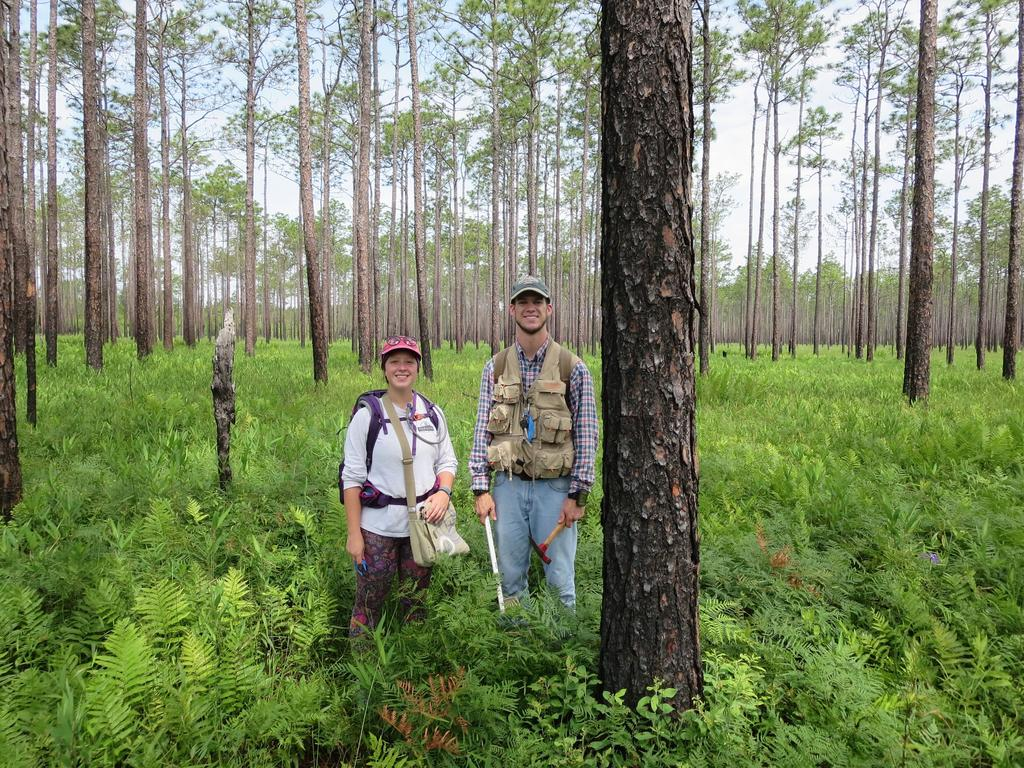 SUMMER RESEARCH INTERNS CAN WORK IN NATURE PRESERVES